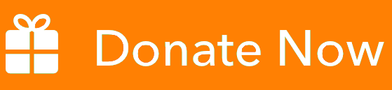 Donate-Now 2